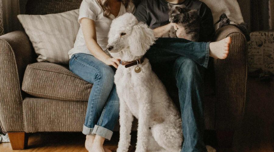 4 dicas para viver confortavelmente em apartamentos compactos
